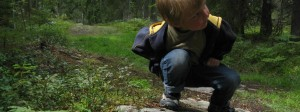 barn-skog-986x370