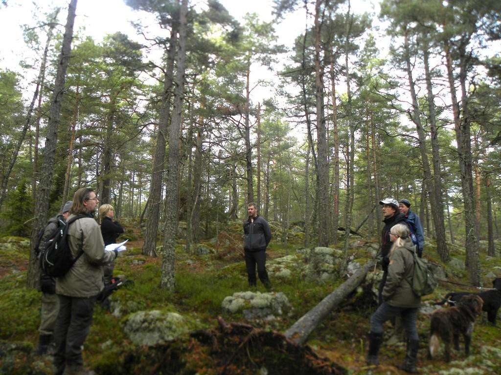 Nacka skogsinventering2